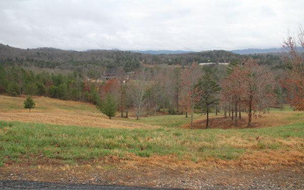 LOT 8 Susie Court, Blairsville, GA 30512 (MLS #278548) :: RE/MAX Town & Country