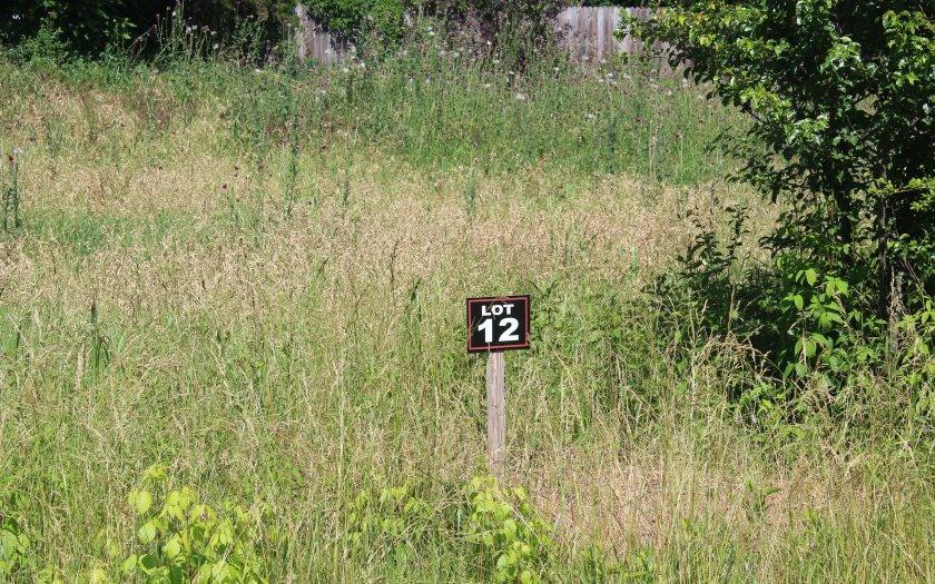 LT 12 Village View - Photo 1
