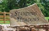 #9 Standing Meadows - Photo 8