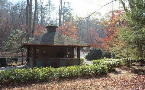 L93 Coldwater Creek, Blue Ridge, GA 30513 (MLS #279867) :: RE/MAX Town & Country