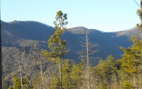 LT 5 Ridgeline Estates, Ducktown, TN 37326 (MLS #279882) :: RE/MAX Town & Country