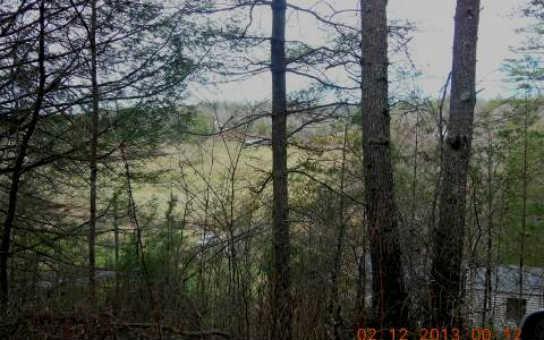 4.9AC Cutcane Road, Mineral Bluff, GA 30559 (MLS #280145) :: RE/MAX Town & Country