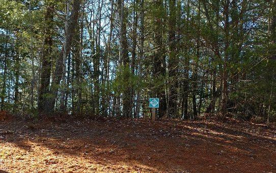 LT 39 Maple Rest Trail, Ellijay, GA 30540 (MLS #280174) :: RE/MAX Town & Country