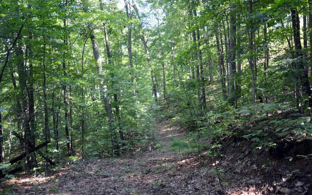 Zackary Ridge - Photo 1