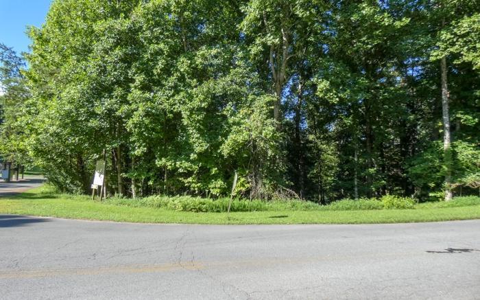 1.53 Cherokee Drive - Photo 1