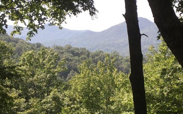LT 33 Fodder Creek Mill, Hiawassee, GA 30546 (MLS #281065) :: Path & Post Real Estate