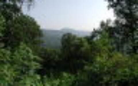 2 View Ridge Trail - Photo 1