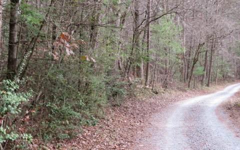 1.89 Hurley Lane, Epworth, GA 30541 (MLS #282348) :: RE/MAX Town & Country