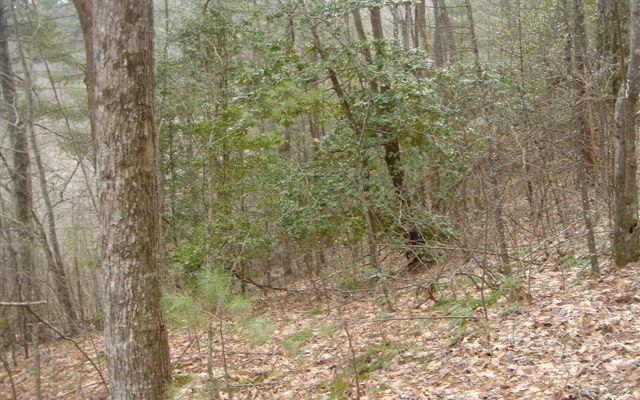 LT 18 Highland Falls S/D, Blairsville, GA 30512 (MLS #283371) :: RE/MAX Town & Country