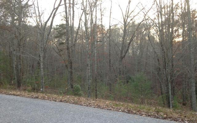 Oakwood Drive, Blairsville, GA 30512 (MLS #283566) :: RE/MAX Town & Country
