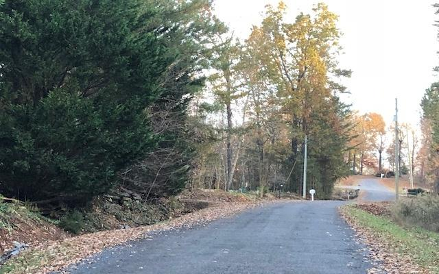 LT 42 Hickory Ridge Drive, Ellijay, GA 30536 (MLS #283604) :: RE/MAX Town & Country
