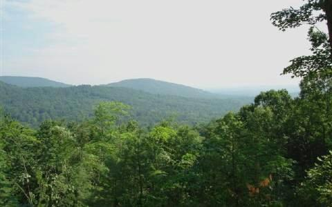LT 23 Raccoon Ridge, Blue Ridge, GA 30513 (MLS #283606) :: RE/MAX Town & Country