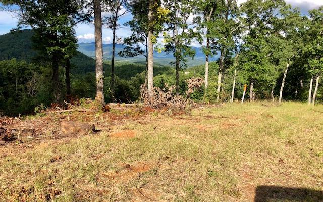 LT 65 Chestnut Mountain, Blairsville, GA 30512 (MLS #284722) :: RE/MAX Town & Country