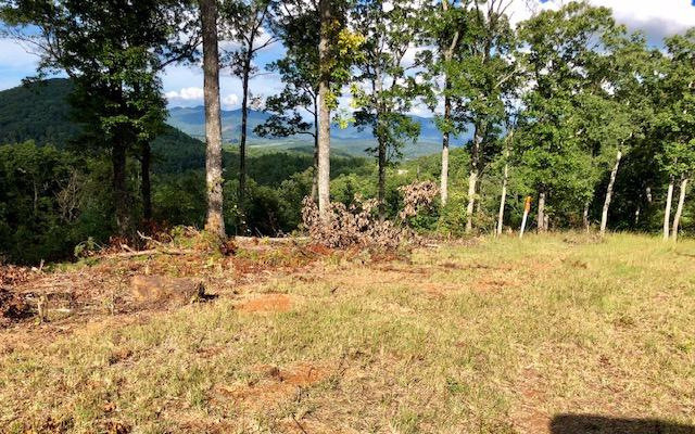 LT 66 Chestnut Mountain, Blairsville, GA 30512 (MLS #284723) :: RE/MAX Town & Country