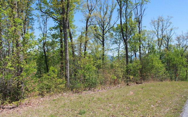 77 Chestnut Mountain, Blairsville, GA 30512 (MLS #284726) :: RE/MAX Town & Country
