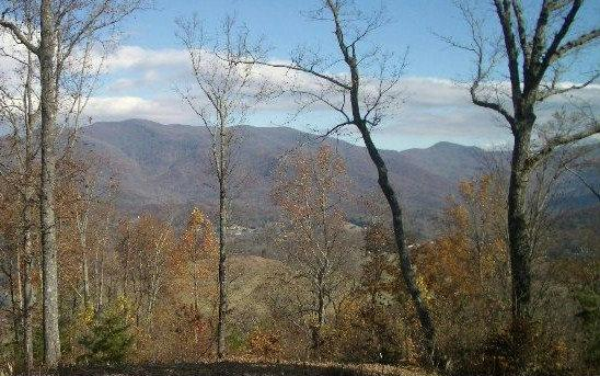 #118 Shiloh, Hayesville, NC 28904 (MLS #285246) :: RE/MAX Town & Country