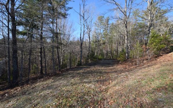 LT 26 Meadow Brook Trail, Morganton, GA 30560 (MLS #286143) :: RE/MAX Town & Country