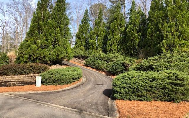 LT 3 The Oaks Drive, Ellijay, GA 30540 (MLS #286425) :: RE/MAX Town & Country