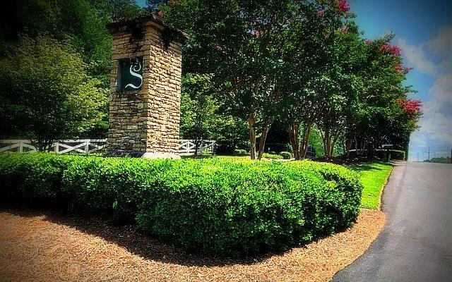 LT 61 The Santuary, Blairsville, GA 30512 (MLS #286731) :: RE/MAX Town & Country