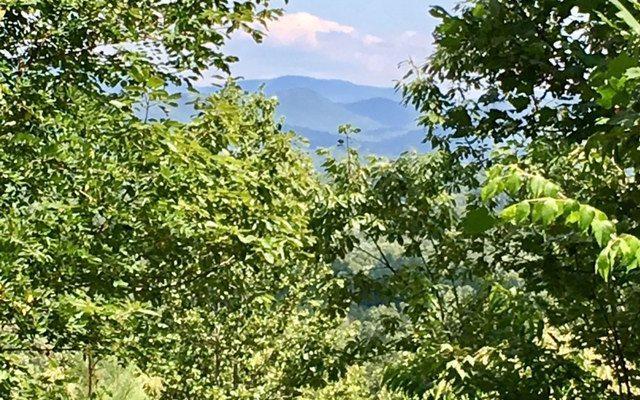 LT 40 Hills At Queen Gap, Blairsville, GA 30512 (MLS #286826) :: RE/MAX Town & Country