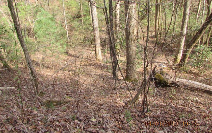 100 Creekside Trail - Photo 1