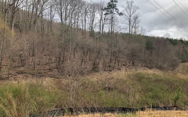 LT223 Rushing Water Drive, Blairsville, GA 30512 (MLS #287058) :: RE/MAX Town & Country