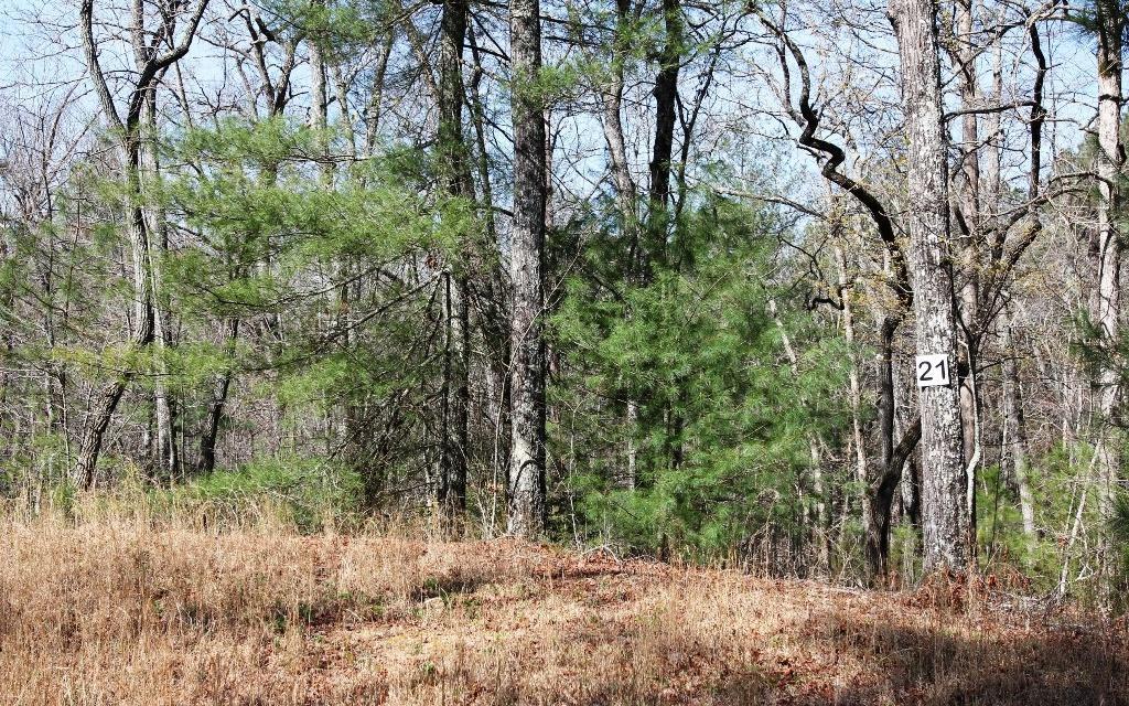 L 21 Oak Hills Estates - Photo 1