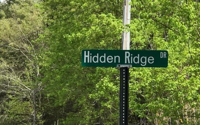 LOT 8 Hidden Ridge, Warne, NC 28909 (MLS #287542) :: RE/MAX Town & Country