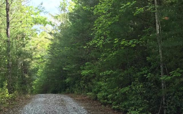 LT 9 Owl Roost Trl, Blairsville, GA 30512 (MLS #287998) :: RE/MAX Town & Country