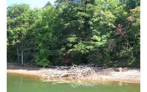LOT Hidden Valley Road, Hiawassee, GA 30546 (MLS #288564) :: RE/MAX Town & Country
