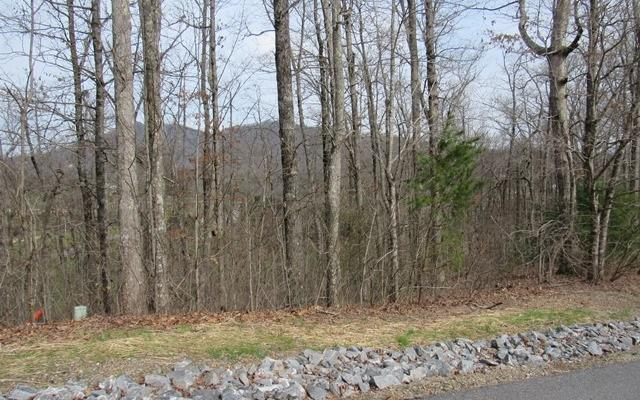 10J Mountain Harbour, Hayesville, NC 28904 (MLS #288607) :: RE/MAX Town & Country