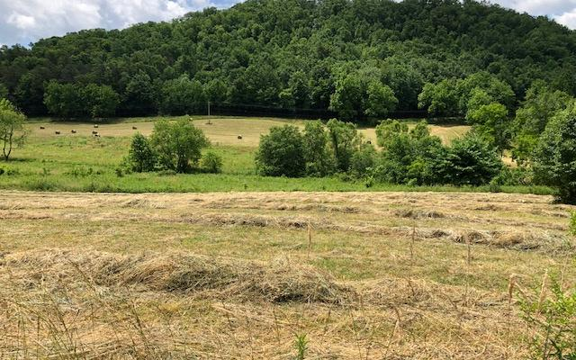 Lt. 12 & 13 Misty Cr, Hayesville, NC 28904 (MLS #288912) :: RE/MAX Town & Country