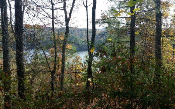 12 Appalachia Cove, Murphy, NC 28906 (MLS #289028) :: Path & Post Real Estate