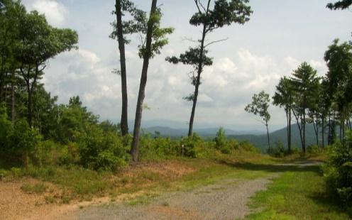 750 Point Overlook Trl, Murphy, NC 28906 (MLS #289668) :: RE/MAX Town & Country