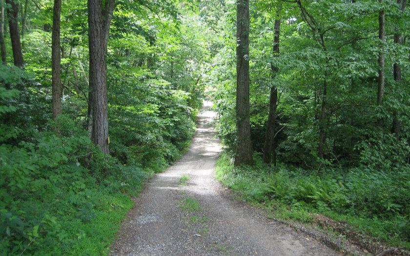 22AC Butternut Lane - Photo 1