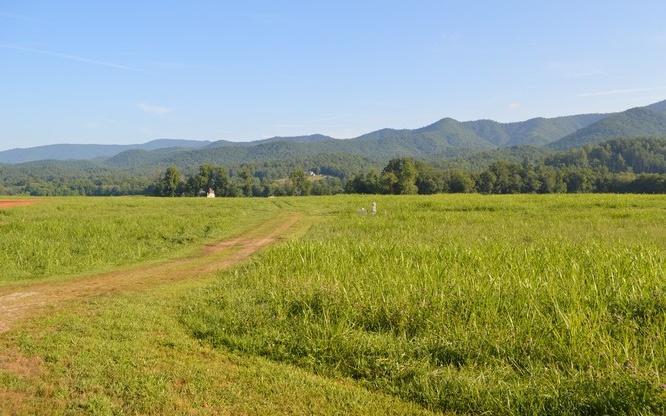 Overlook @ Rice Farm - Photo 1