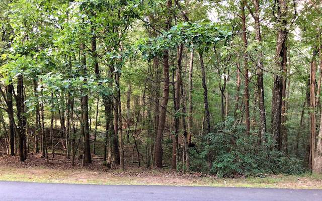 LT32 Lookiba Lane - Photo 1