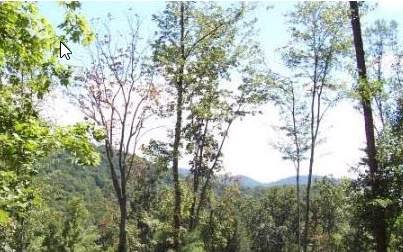 0 Meadow Loop Rd, East Ellijay, GA 30540 (MLS #292695) :: RE/MAX Town & Country