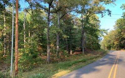 LOT 8 Eaton Road, Blue Ridge, GA 30513 (MLS #292763) :: RE/MAX Town & Country