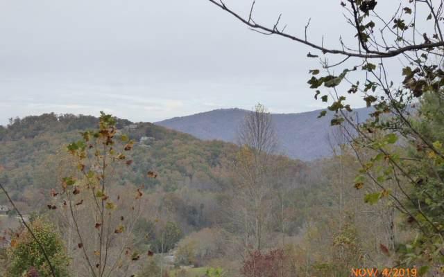 LT 14 Eagle Fork - Photo 1
