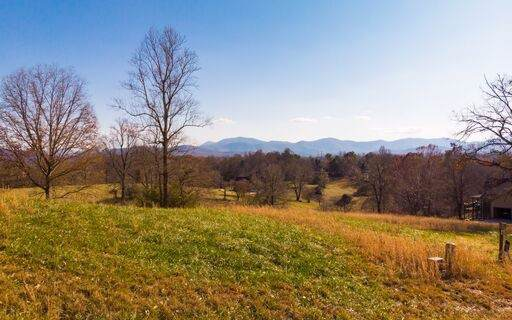 LT 88 Arbor Lane, Blairsville, GA 30512 (MLS #293725) :: RE/MAX Town & Country