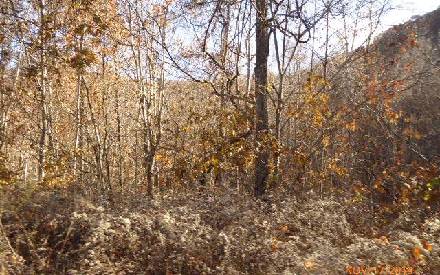 LT 5 Lories Mountain Dr, Hayesville, NC 28904 (MLS #294338) :: Path & Post Real Estate