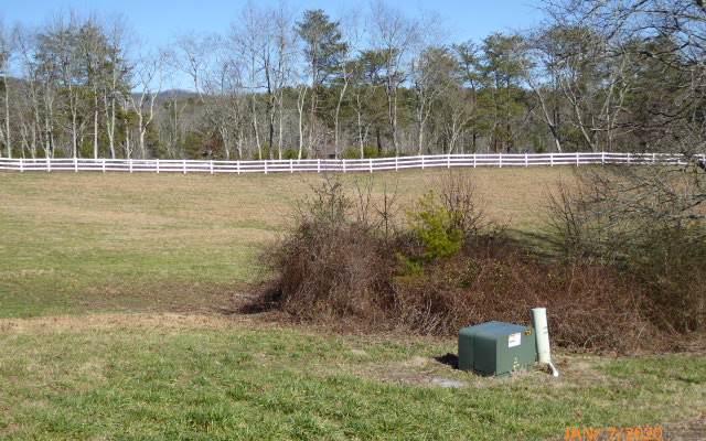 LT 16 Owen Glen, Blairsville, GA 30512 (MLS #294409) :: RE/MAX Town & Country