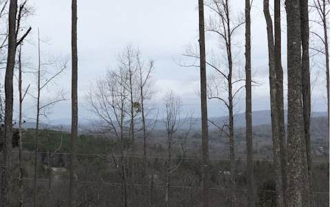 LT 35 Highland Park, Blairsville, GA 30512 (MLS #294442) :: RE/MAX Town & Country
