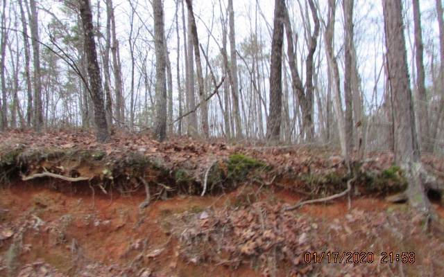 31 Cherocree Trail/Camp - Photo 1