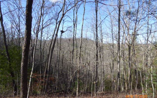 LT18 Hawksclaw Estates, Blairsville, GA 30512 (MLS #294857) :: RE/MAX Town & Country