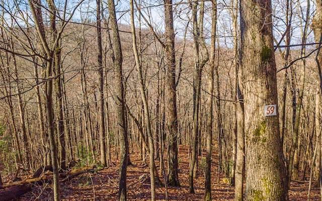 LT 59 Deer Run, Morganton, GA 30560 (MLS #294870) :: RE/MAX Town & Country