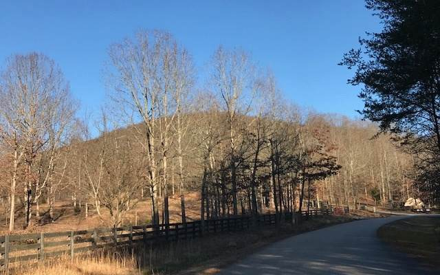 LT 3 Long Mountain Trail, Cleveland, GA 30528 (MLS #295054) :: RE/MAX Town & Country