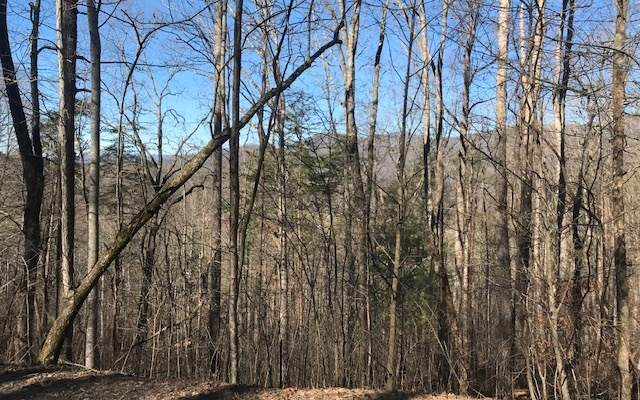LOT95 Shiloh Stables, Hayesville, NC 28904 (MLS #295077) :: Path & Post Real Estate