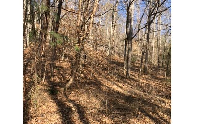 LT 5 Pine Ridge, Hayesville, NC 28901 (MLS #295119) :: Path & Post Real Estate